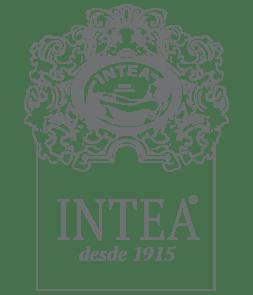 logo_INTEA_2015